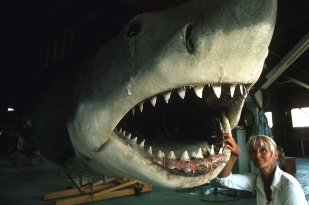 Kobieta zagląda do paszczy rekina.